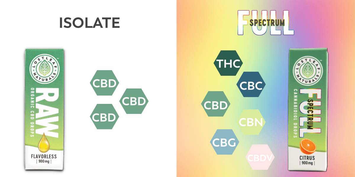 noname 3 - Pure CBD vs. Full Spectrum | What's Right For Me?